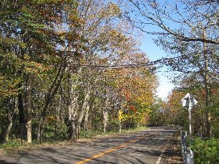 栃木県那須郡那須町平成の森|アニマルパスウエイの事例と地図 ヤマネ,モモンガ