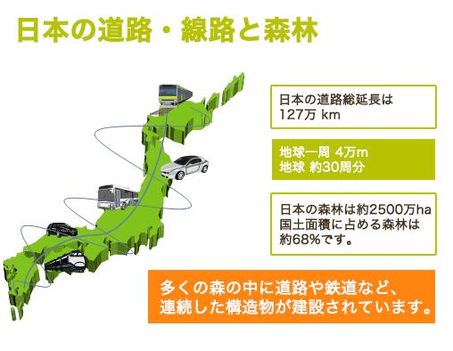 日本の道路・線路と森林|アニマルパスウェイと野生生物の会