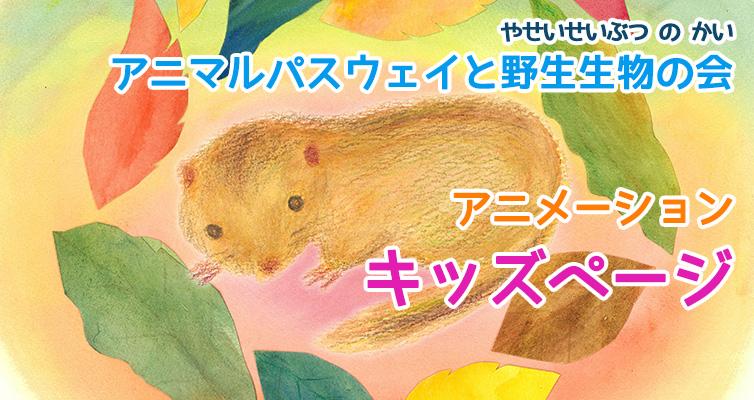 ☆アニメーション『ヤマネのマルくん南の森へ』