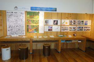 「森と命を繋ぐ野生動物の歩道橋~アニマルパスウェイ~」展 港区立エコプラザ